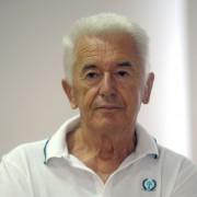 IN MEMORIAM: DRAGAN T. TOMIĆ